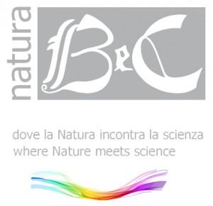 logo_onda-300x290